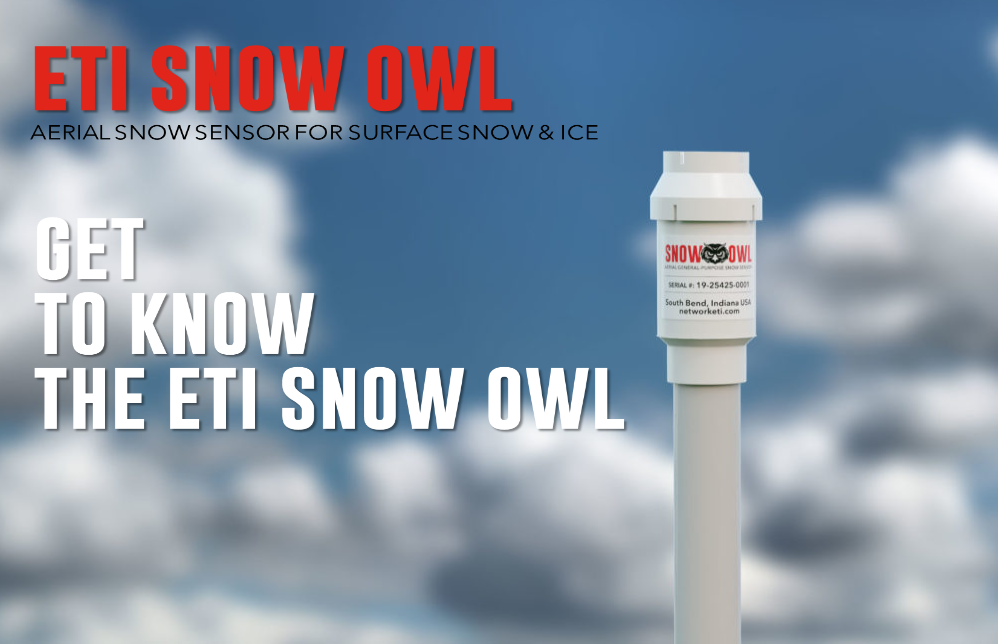GET TO KNOW THE SNOW OWL